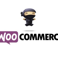 21 Best Marketing Plugins for WooCommerce — AdWords