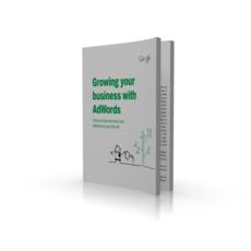 Laat Je Bedrijf Groeien Met AdWords - Google